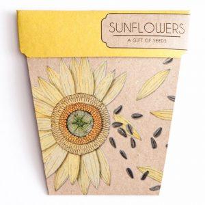sunflower gift of seeds