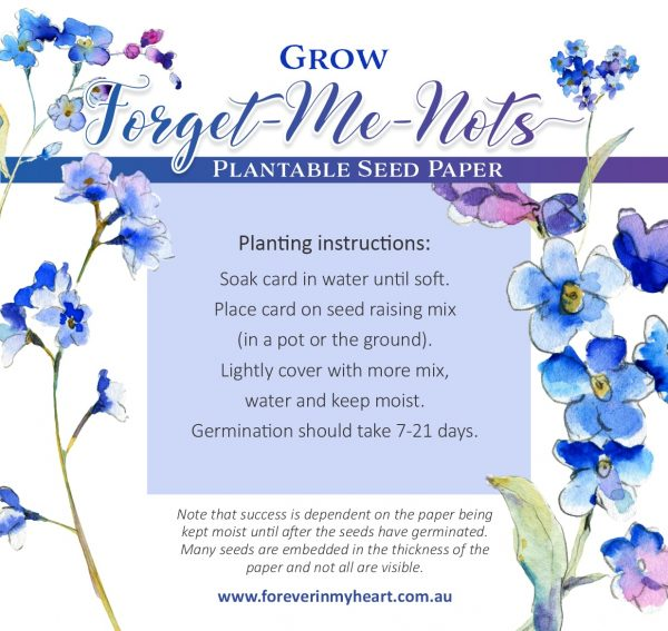 Forget Me Not Memorial Seed Card Instructions