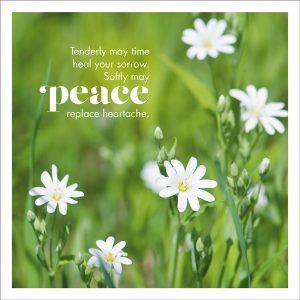 peace sympathy card